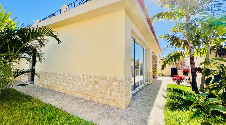 house palm mar garden